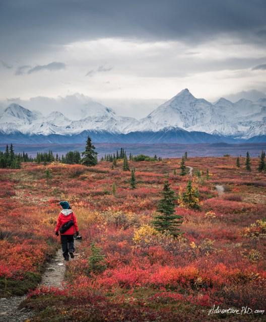 McKinley Bar Trail with mountain views in the fall season