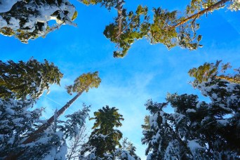 ...dass uns schönstes Winter-Wetter beglücken würde.