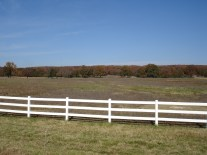 The east Oklahoma landscape. Beautiful woods, and many white board fences.