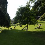 A crowd of people lay in the sun on bright green grass in a park.
