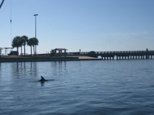 The fin of a dolphin breaks through the ocean's surface by a pier.