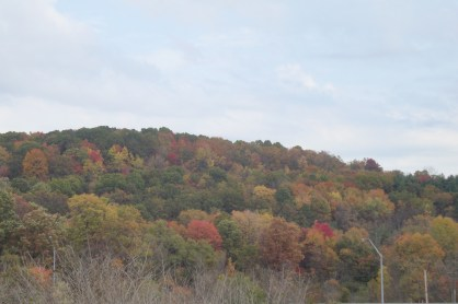 Penn hills