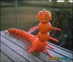 halloween centipede