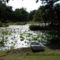 Harmonious Enjoyment Garden, Saint Andrew