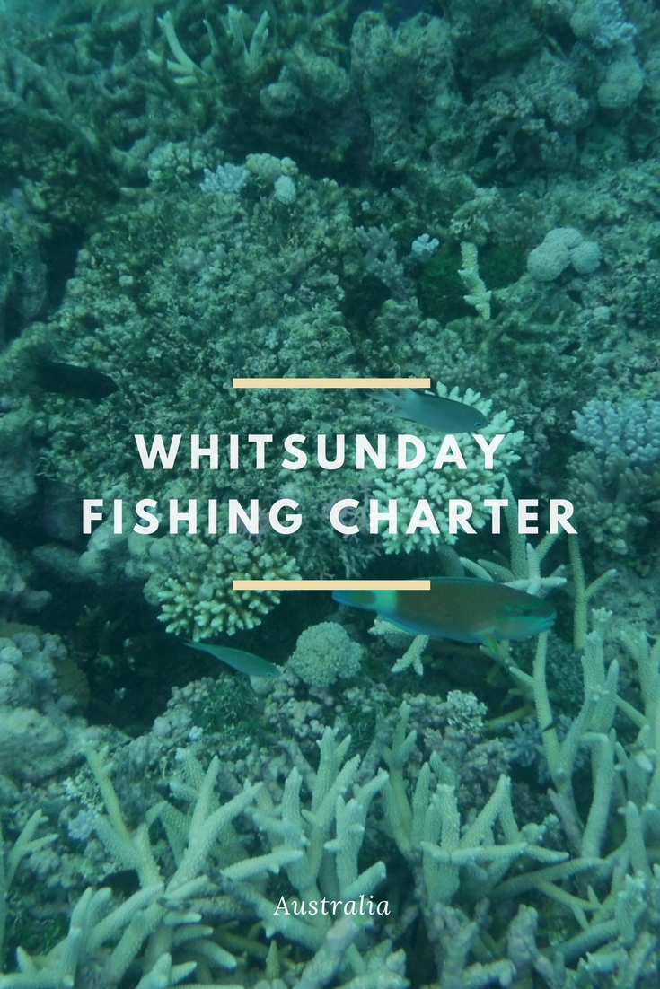 Is it the crystal clear waters of the Whitsundays? or the amazing fish that makes Whitsundays one of the most beautiful places to go fishing? We thought we would find out with a 2 night, 3-day Whitsunday fishing charter with the amazing team at Topnotch Game Fishing.