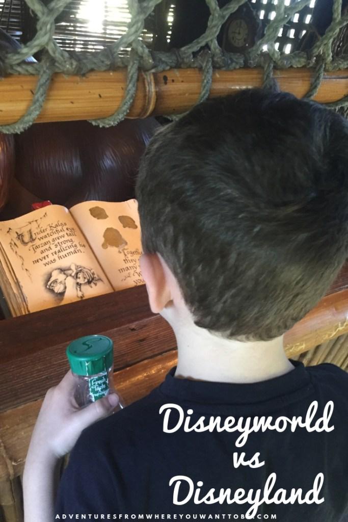 Disneyworld vs Disneyland