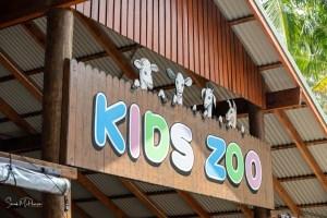 Australia Zoo - Kids Zoo