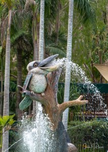 Water Park - Australia Zoo