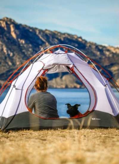 9 Expert Tips For Camping With Dogs