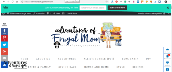 Newsletters Are Not My Thing from North Carolina Lifestyle Blogger Adventures of Frugal Mom
