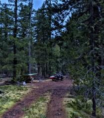 Alone in camp