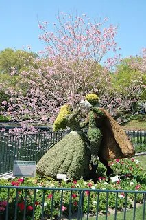 Mickey Topiary Pinspiration
