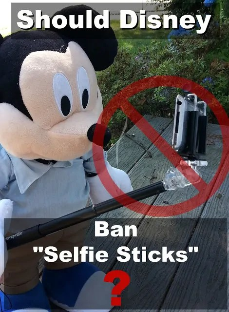 "Should Disney Ban the ""Selfie Stick"" 