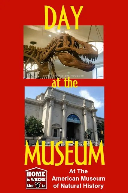 Day at the Museum | Home is Where the Mouse is