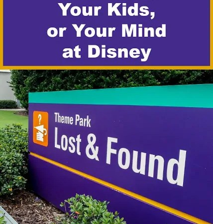 How NOT to Lose Your Kids, Your Stuff, or Your Mind at Disney