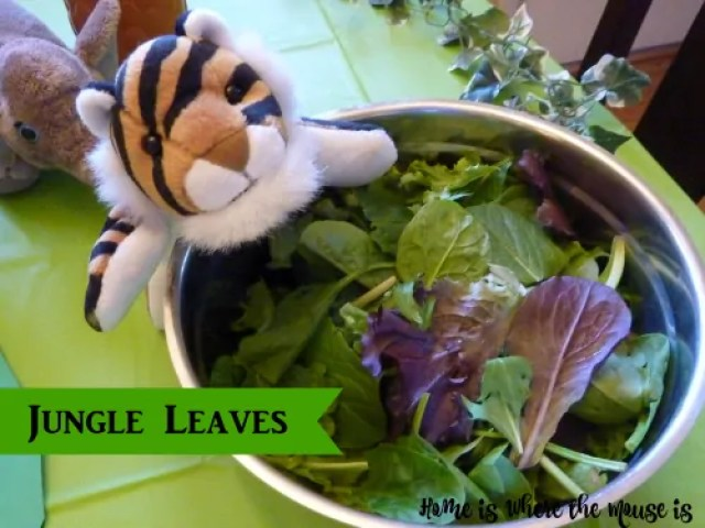 Jungle Leaves Salad