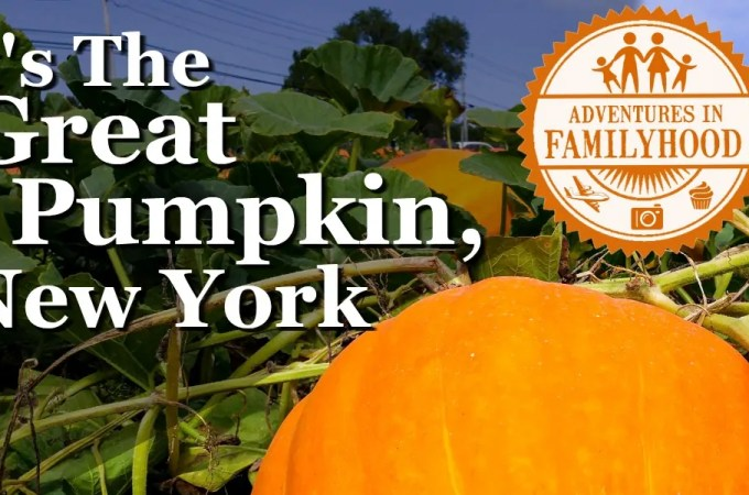 New York's Best Pumpkin Patches and Displays