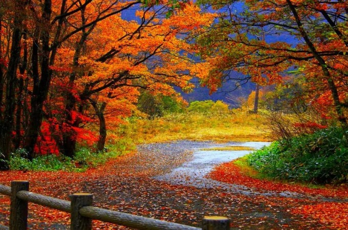 10 Best U.S. National Parks for Fall Foliage Trips