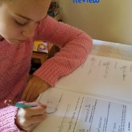 Easy Sentence Diagramming – The Critical Thinking Co. Review
