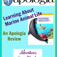 Learning About Marine Animal Life – An Apologia Review