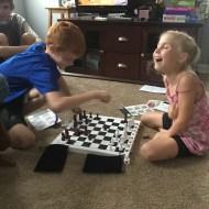 Fun Family Chess – A Brain Blox Review