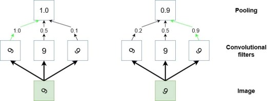 Convolutional Neural Networks Tutorial in PyTorch - Adventures in