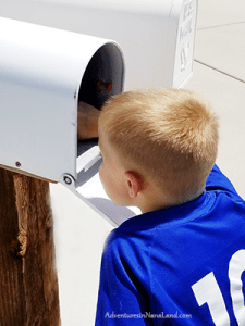 Kid at mailbox, kid getting mail, kid getting mail from grandparent