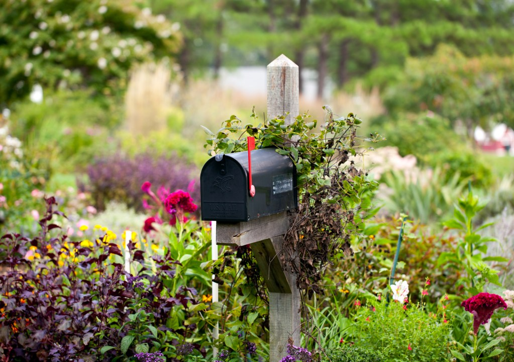 Mailbox surrounded by flowers - Being a penpal to your grandchildren - Adventures in NanaLand