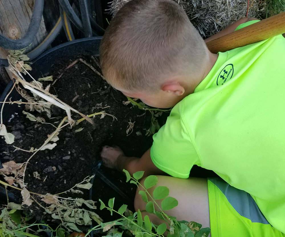 Boy digging in the dirt - Gardening with kids - Adventures in NanaLand