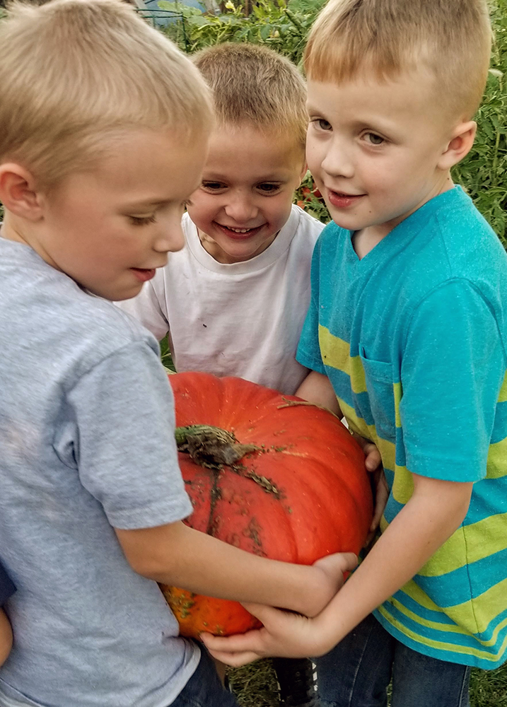 Three little boys carrying a large pumpkin together - Gardening with kids - Adventures in NanaLand