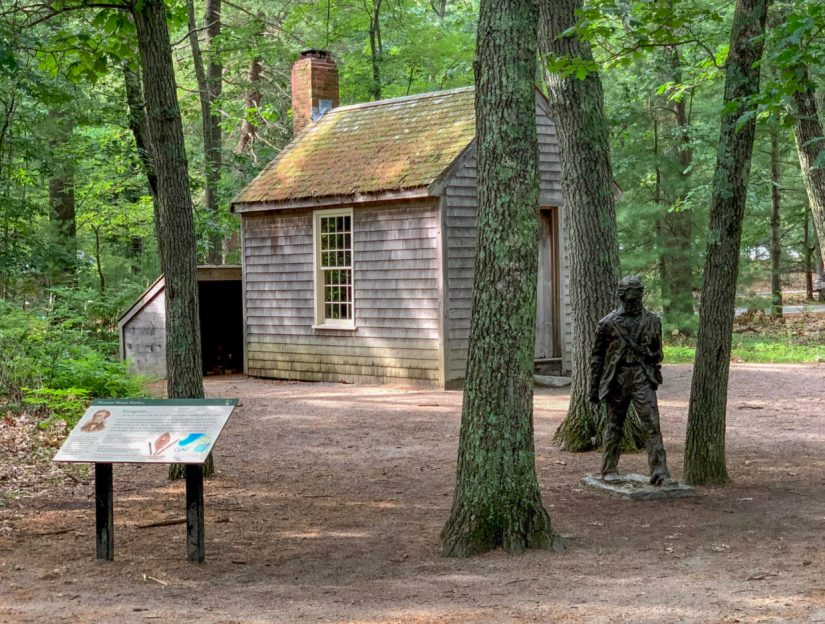 What to see on Walden Pond