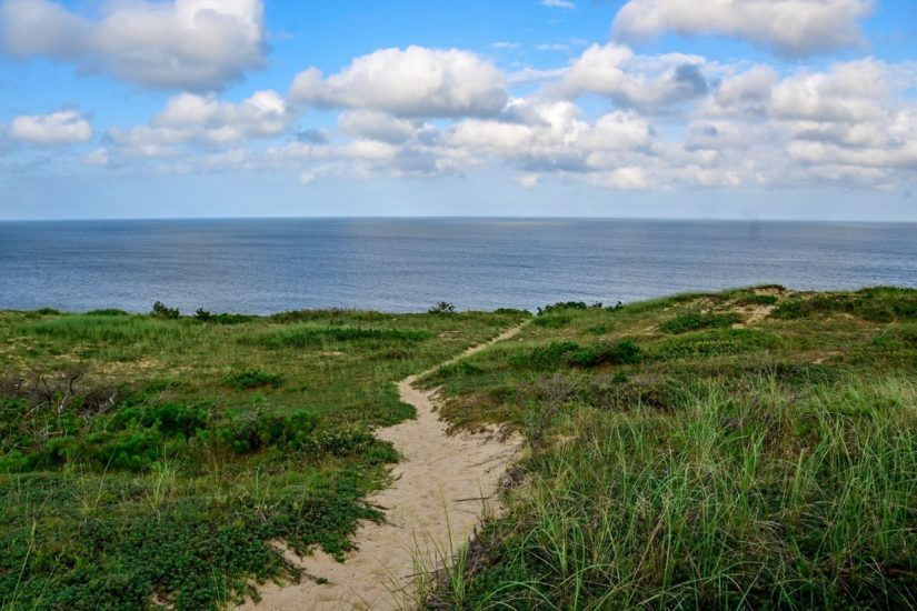 what to do on the Outer Cape