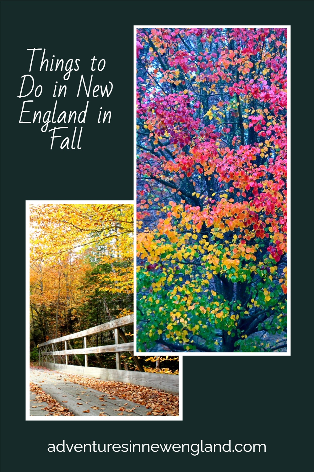 New England is the ultimate spot to spend fall in the United States. Not only is it beautiful, but there are also many activities to enjoy. #fallinnewengland #NewEngland #USTravel