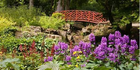 Batsford Arboretum om adventuresinourvan.com blog