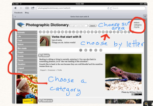 Sites for Photographic Images