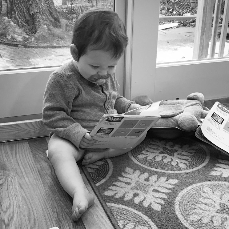 A quiet moment to read