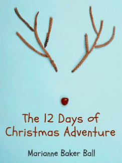 12 Days book cover