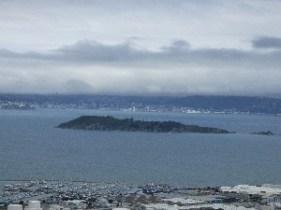 Matiu/Somes Island in Wellington Harbour