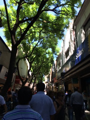The shopping area of the city centre is filled with trees, makes shopping in the heat more bearable.