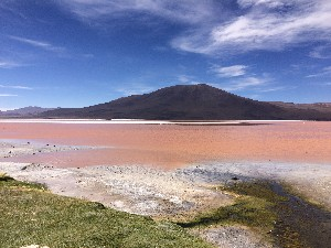 ..a borax lake containing algae and red minerals
