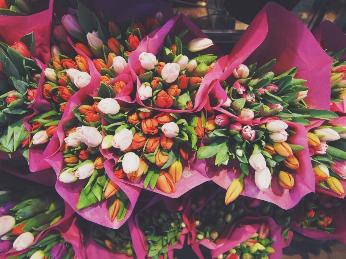 bunches of Tulips in pink paper