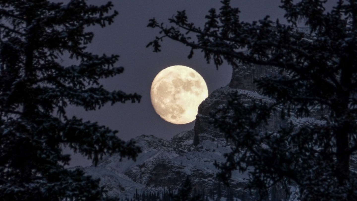 mountain and forest scene with moon in background