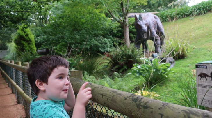 boy looking at dinsoaurs Tamba Park Jersey