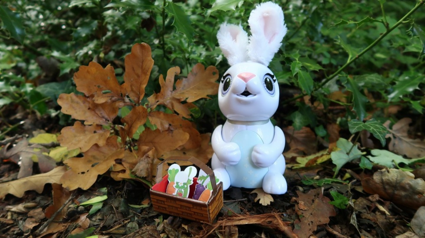 zoomer hungry bunny and picnic basket of treats