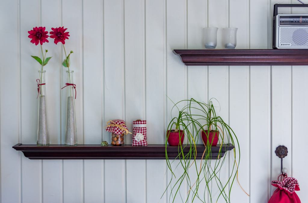 shelf with flowers and plants on