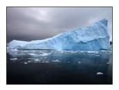 iceberg website