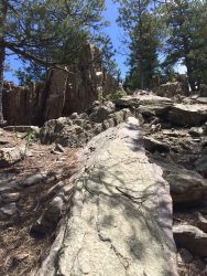 IMG_4509 rocks