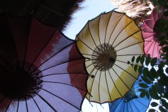 A ceiling of umbrella's at the Gili Backpackers.