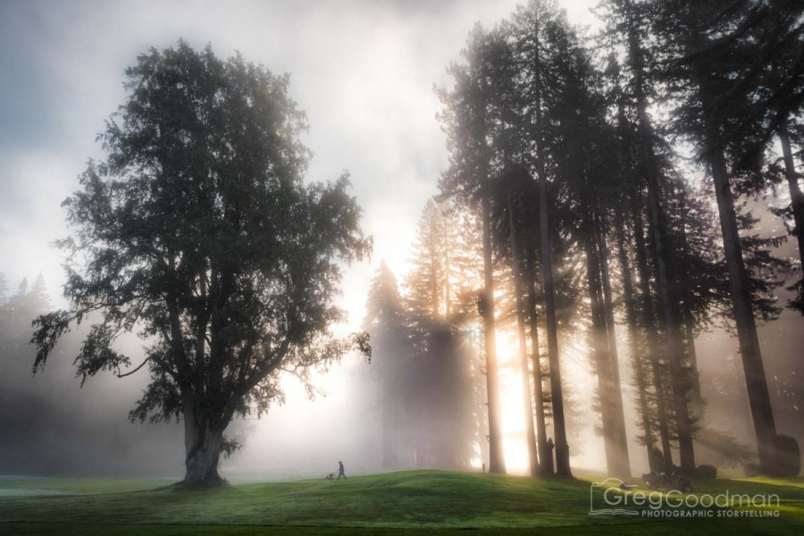 A foggy Monte Rio morning at the Northwood Golf Club