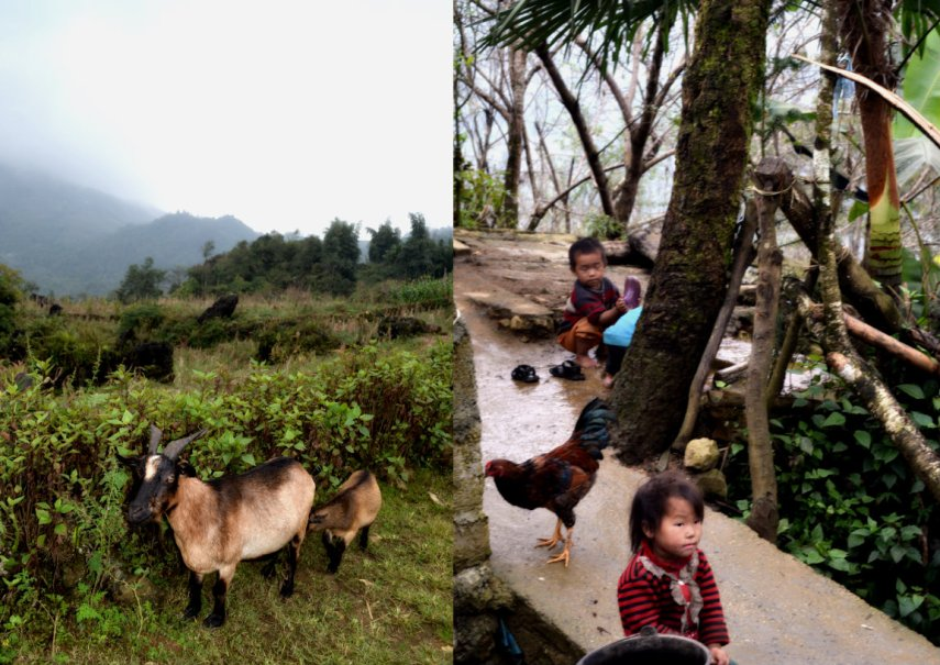 village kids near sapa